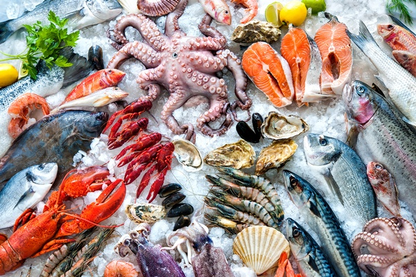 Seafood Expo Global in Brussels